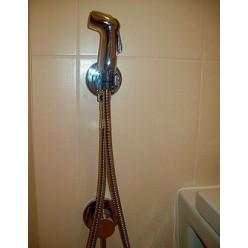 Комплект Roca Meridian 346248000 с гигиеническим душем